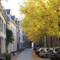Sint Bernardusstraat, Maastricht, Маастрихт