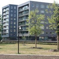 Coldstream Thiemsland, Хенгело