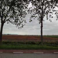 Westbeemster, Jisperweg, Алькмаар