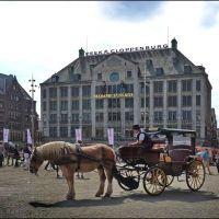 Madame Tussaud museum, Амстердам