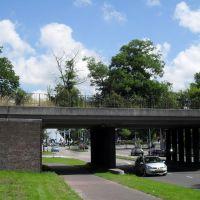 Bomen op viaduct (juli 2012), Велсен