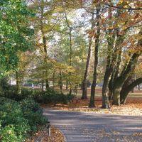 Valkenberg park,Breda, The Netherlands, Бреда