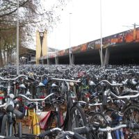 """Bicycle forest"" outdoor public bicycle parking near railwaystation, Tilburg, The Netherlands ( Title inspired by Dr. Azzouqa ), Тилбург"