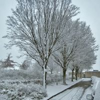 First snow falling at the Akkerstraat, Helmond, Хелмонд