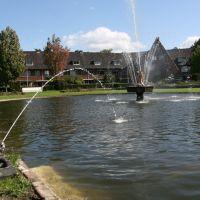 Frog fountain; Zeist., Зейст