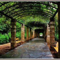 Secret garden..., Афины