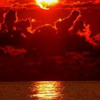 Крокодил_Солнце в небе проглотил..., Гали