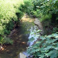 Маленькая речка Адзлагара, Гудаута