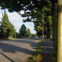 Бзыбское шоссе в сторону центра, Гульрипш