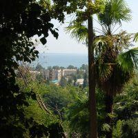 Сухумского питомника обезьянник, Сухуми
