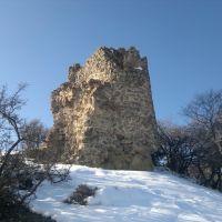 ისტორიული ციხე სიმაგრის ნანგრევები სოფელ აბასთუმანში. აღმოსავლეთის ხედი. 2013, Абастумани