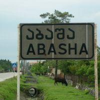 Abasha Sign, Абаша