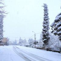 Snowy Abasha, Абаша