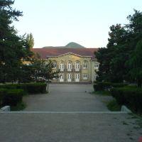 #1 school, Болниси