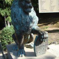 Borjomi Lion, Боржоми