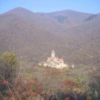 View on the Pitarety Monastery. 2006-11-26, Дманиси