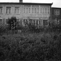 Yahya Kişinin evi, Дманиси