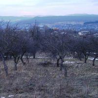 Village Dmanisi, Дманиси