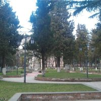 ირინეს პარკი, Зестафони
