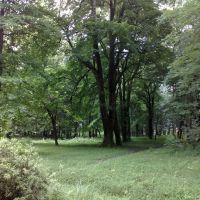 Ботанический сад, Зугдиди