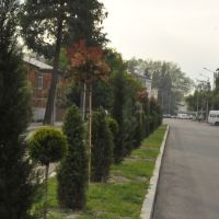 Zugdidi, Зугдиди