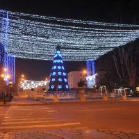 Zugdidi-2011, Зугдиди