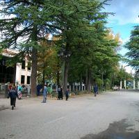 Gamsakhurdia street in Zugdidi, Зугдиди