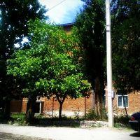 კასპის #3 საჯარო სკოლა (4), Каспи