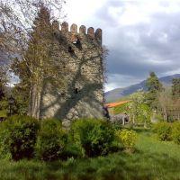 ციხე რომელშიც დაიბადა ილია. Tower in kvareli, Кварели