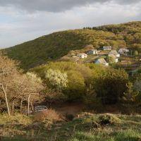 Georgian small village, Коджори