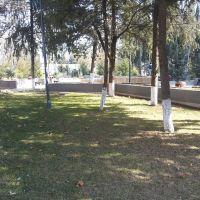 Park, Марнеули