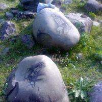 მდინარე ჯეჯორა, (მარიამ ჯმუხაძის ნახატების გამოფენა), Они