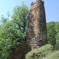 დავითურები ,ზურგიანი კოშკი.defensive tower in Daviturebi(GEORGIA), Пасанаури