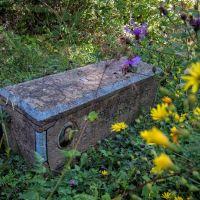 Stone Coffin, Пасанаури