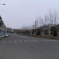 POTI A STREET, Поти