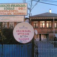 DGcom, Самтредиа