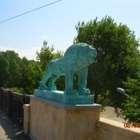 Mcvane lomi..., Тбилиси