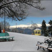 Telavi, Nadikvari park, Телави