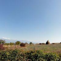 Near Telavi, Телави