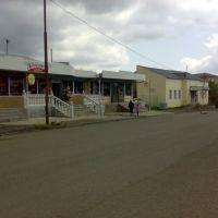Магазины перед рынком, Тетри-Цкаро