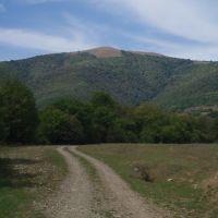 გუზუმბათი, Тианети