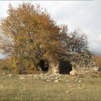 თიანეთი, Тианети