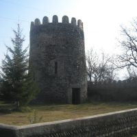 Castle in Tskhramukha, Хашури