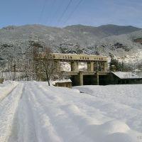 Tea Kalandadze, Цагери