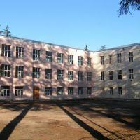 I sashualo skola, Цаленджиха