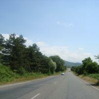 26.06.2011 Georgia, region Kakheti, Цнори