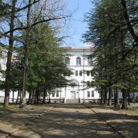 School N4, Цхалтубо