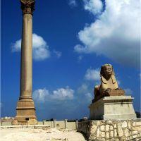 EGITTO - ALESSANDRIA - SCAVI ROMANI, Александрия