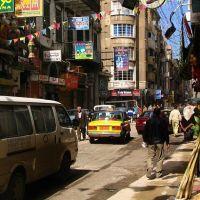 Aleksandria #16, Александрия
