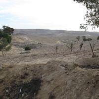 Arad (near hapalmach st.), Арад
